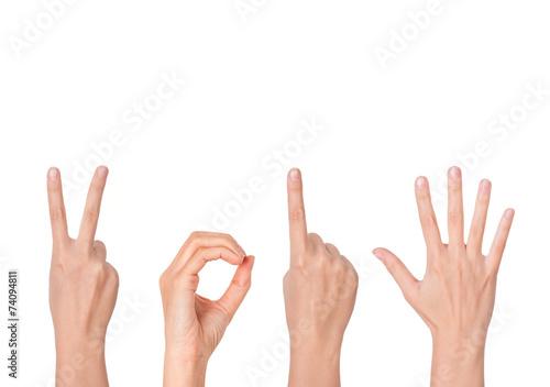 Leinwanddruck Bild new year showing by hands