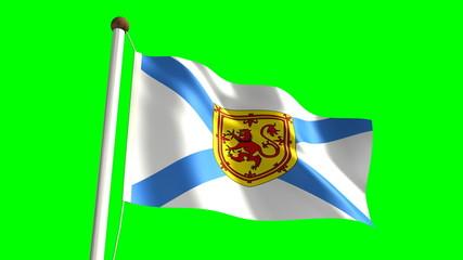 Nova Scotia flag (seamless & green screen)