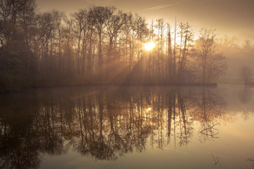 étang lac brume