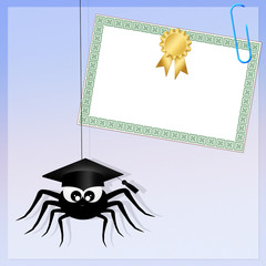 spider with diploma