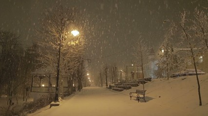 Snow at night in the park