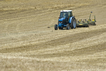 Tractor Seeding Field