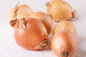 Small fresh brown onions