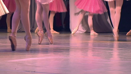 Ballet Performances