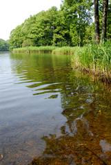 夏の曽原湖