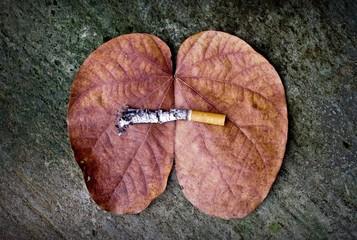 great danger from cigarette
