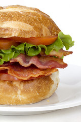 Close up shot of BLT sandwich on a white plate.