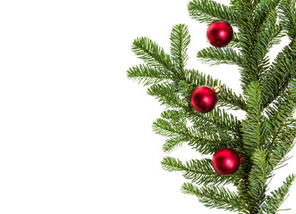 Noble fir branch with red ornaments