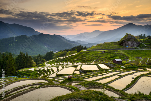 Tuinposter Japan Rice Paddies in Kumano, Japan