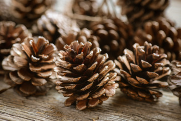 Pinecones on Rustic Wood Background