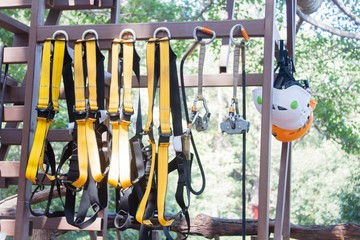 Safety equipments for climbing tree