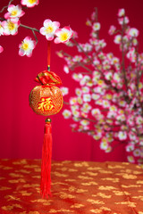 chinese new year decorations on cherry blossom tree
