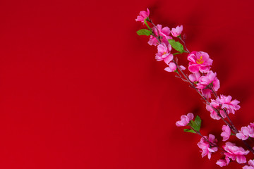 Plum flowers with Red Packet copyspace for chinese new year