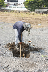 Worker  to dig a hole.