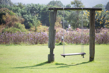 playground swing made wood hanging in green grass field