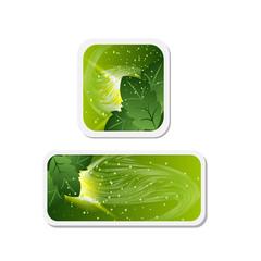 abstract elegant bio-organic web banner,header or frame