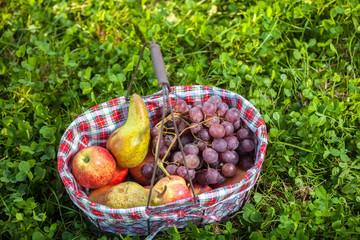 Picnic basket fruits