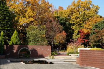 秋の長居公園