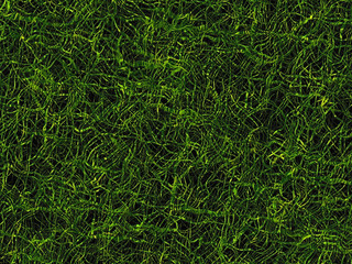 tangled lush green grass texture of evening time