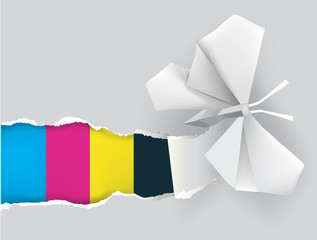 Origami butterfly with print colors