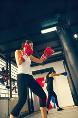 Female Boxers At Training