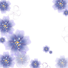 Colored flowers on a white background.