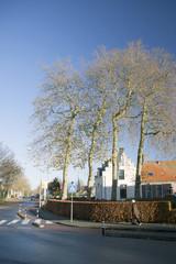 autumn in the dutch town of Nijkerk