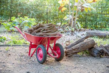 Wheel barrow  carry wood