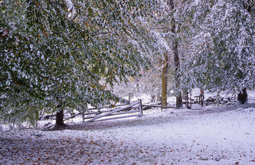 First snowfall at fall