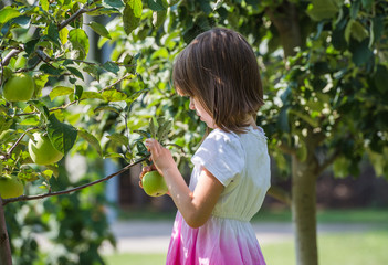 Girl picked apple