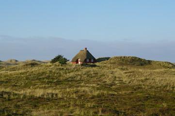 Reetdachhaus in Dänemarks Jütland 3