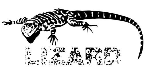 Black lizard lying on the sun, illustration isolated on white