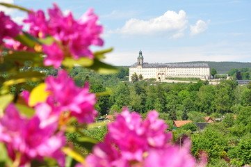 Schloss Heidecksburg im Frühling