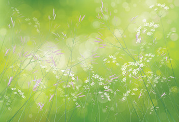 Vector spring floral  background.
