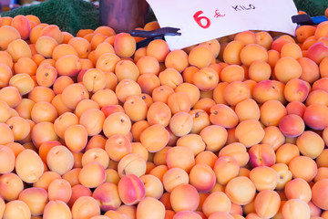 apricots on a counter of shop