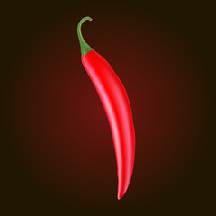 Realistic picture of the Cayenne red pepper