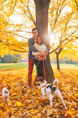 Portrait of romantic couple outdoors in autumn park with dogs