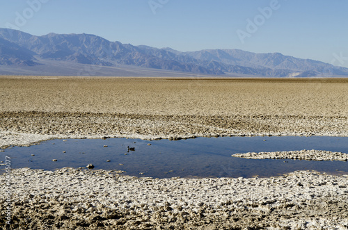 Leinwanddruck Bild bedwater pond