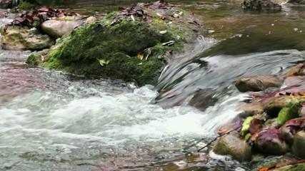 Fresh Creek Cascade in Autumn
