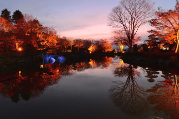 夕暮れの桜山公園