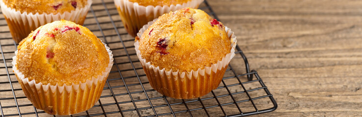 Muffins with cranberry. Panoramic image. Selective focus