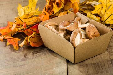 Box of fresh Portobella mushrooms with leaves