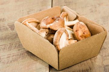 Box of fresh Portobella mushrooms