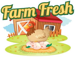A farm fresh template