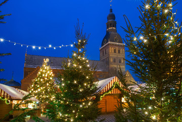 Cathedral in christmas forest