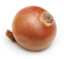 Ripe onion bulb isolated