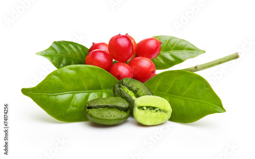 Green coffee beans with leaf - 74174256