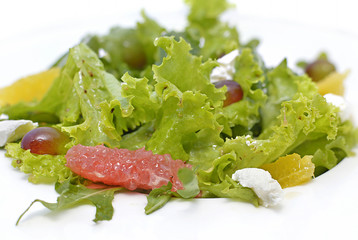 Vegetarian salad with cheese and fruit