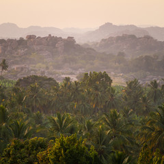 Wonderful sunrise above tropical palm tree forest with thick mor