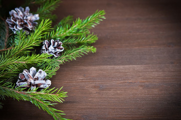 Fir branches with  cones on wooden  backgraund